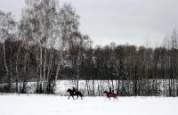 Фото окрестностей_6