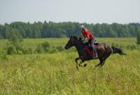 Скачки, лето 2015 #караван #инино #цко_4
