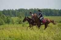 Скачки, лето 2015 #караван #инино #цко_7