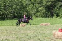 Соревнования по вестерну 8-9 июня 2013_16