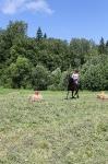 Соревнования по вестерну 8-9 июня 2013_23